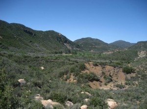 Sespe Wilderness